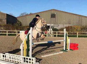Brampton Equestrian horse riding in norwich