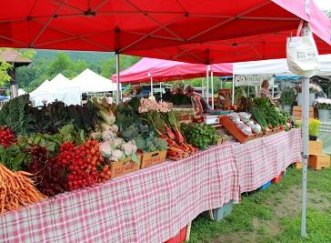 Farmers Market in Norwich