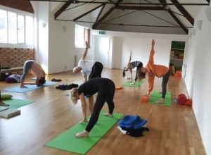 The Yoga Tree norwich